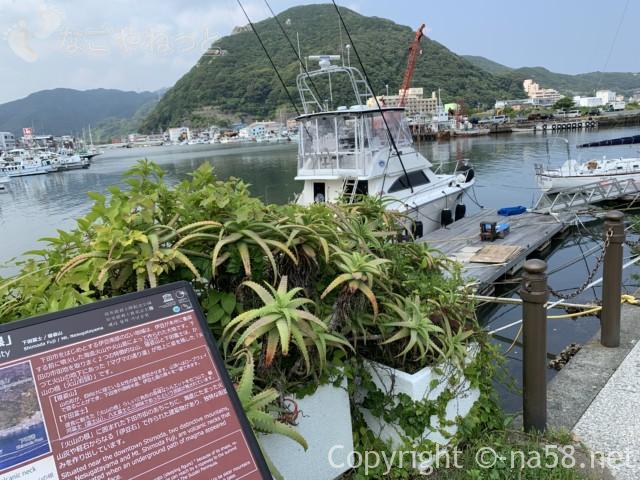 下田のペリー上陸記念碑付近から下田市魚市場方面を見る、火山の根の解説