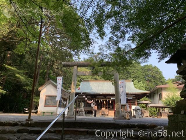 龍尾神社(静岡県掛川市)の境内本殿正面