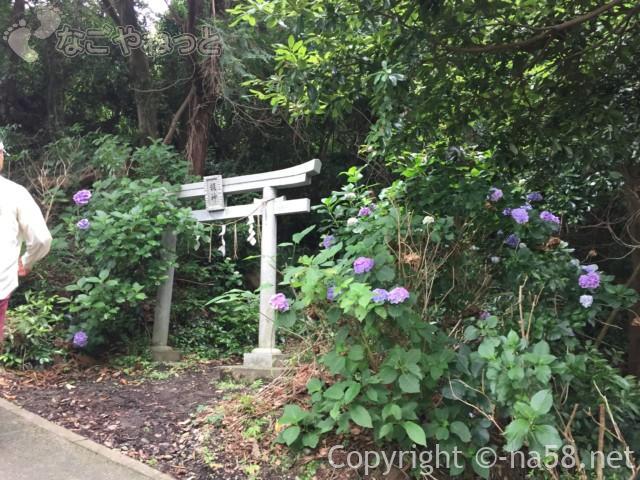 秋葉公園(静岡県牧之原市)のあじさいと秋葉神社の鳥居