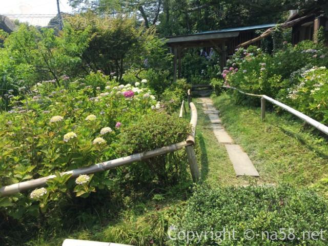 実谷山極楽寺(静岡県森町)のあじさい、ととのえられた散策路