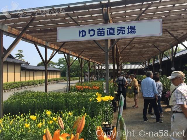 可睡ゆりの園(静岡県袋井市)ゆりの苗直売所