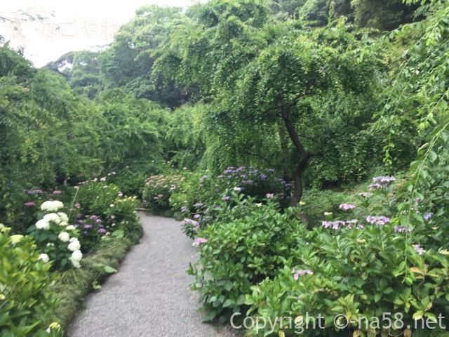 龍尾神社(静岡県掛川市)の花庭園内