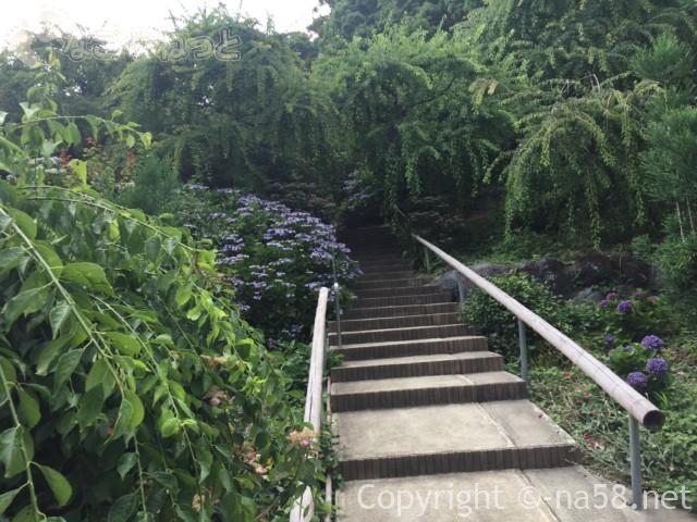 龍尾神社(静岡県掛川市)の花庭園内のあじさいと階段