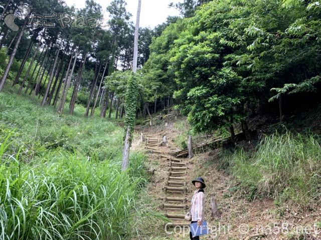 風土の森(静岡県河津市)を散策