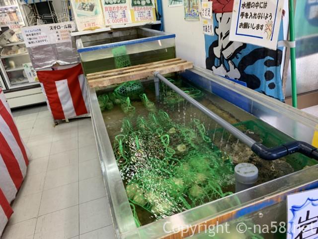 道の駅「伊勢志摩」物産館(三重県志摩市)岩ガキ
