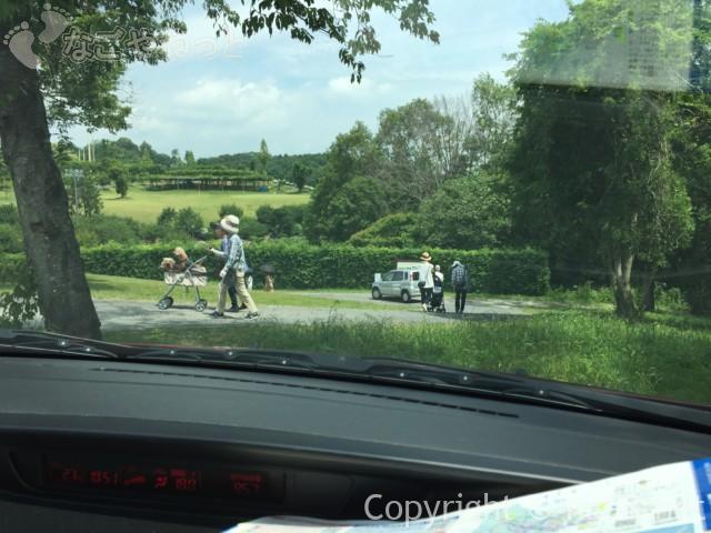 かざはやの里(三重県津市)でワンコ3匹を連れた人