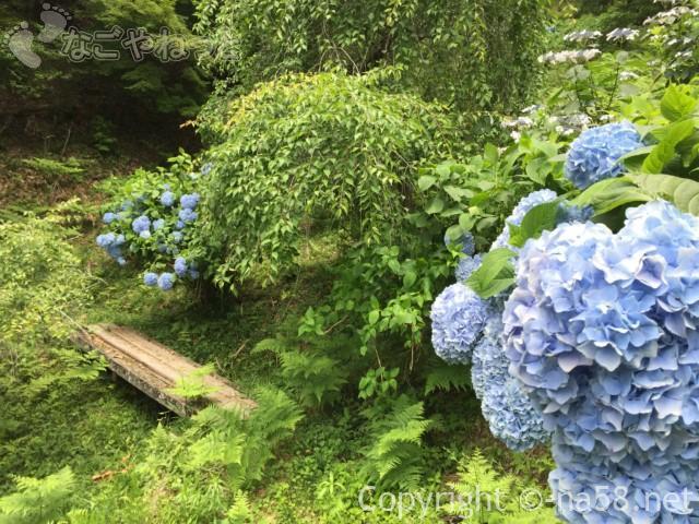 「木の館豊寿庵」(三重県伊賀市)の散策路のあじさい
