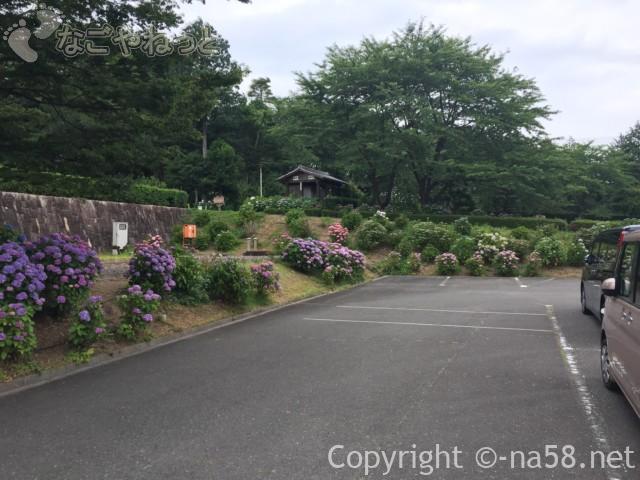 万葉の里公園(三重県いなべ市)のあじさいと駐車場