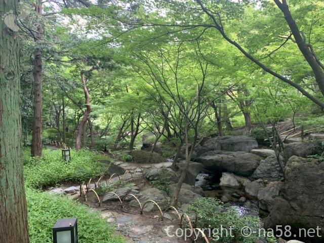 「白鳥庭園」(名古屋市熱田区)園内の雄滝付近