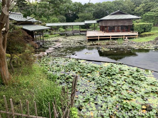 「白鳥庭園」(名古屋市熱田区)の数寄屋造り建築の「清羽亭」別の角度から