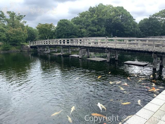 「白鳥庭園」(名古屋市熱田区)園内、出会橋