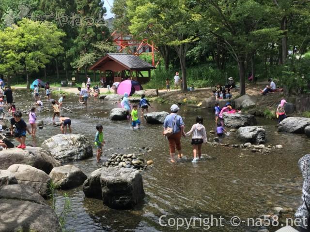 「木曽三水園」で水(川)遊び