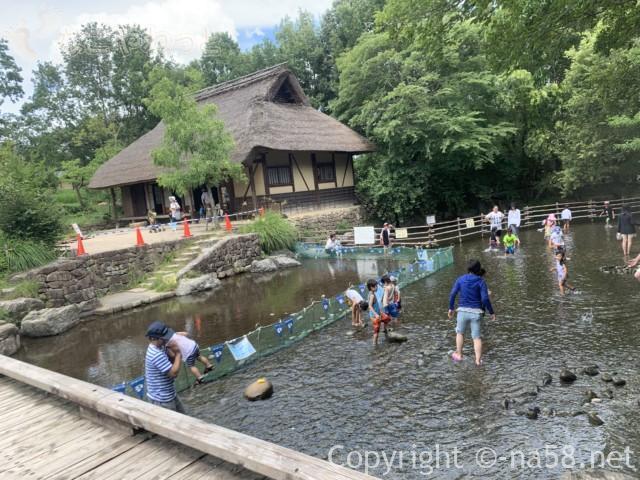 「木曽三水園」で水(川)遊び、流れのない方と農家