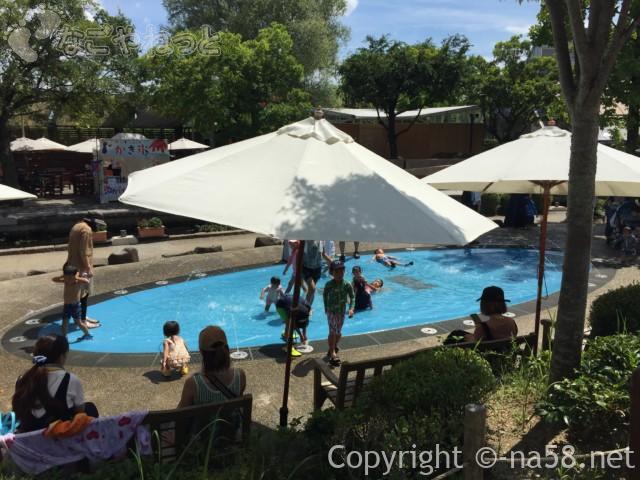 「木曽三水園」で水遊び、霧の遊び場