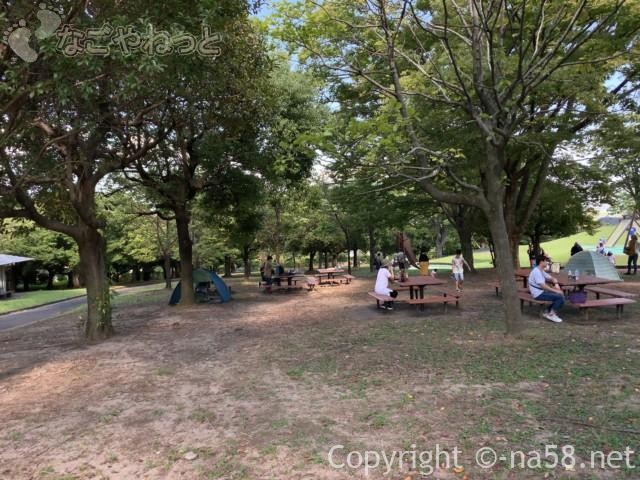 岐阜県こどもの国(岐阜県養老郡養老町)の広場と木漏れ日