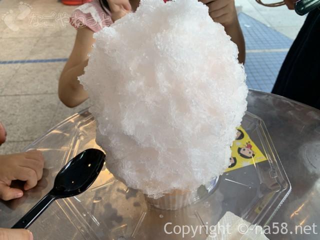 名古屋の栄のオアシス21で、川久屋のかき氷を