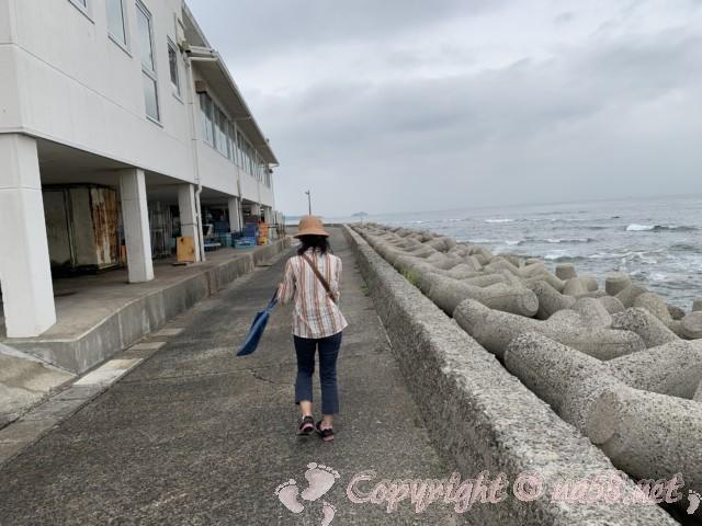 まるは食堂本店(愛知県南知多町)本店の建物の裏側、海と通路