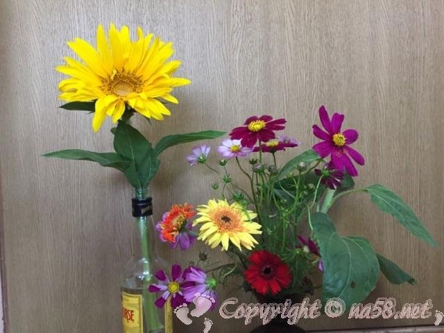 花ひろば(愛知県半田市南知多町)で花摘みして持ち帰った花たち