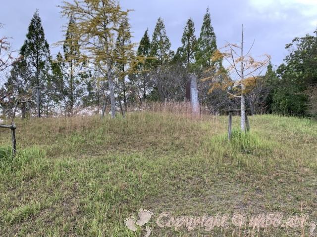 道の駅・白龍城(ペーロンジョウ)兵庫県相生市の隣にある中央公園、木立やゆるやかな坂