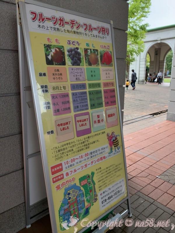 神戸フルーツフラワーパーク大沢(神戸市)フルーツガーデンのフルーツ狩り