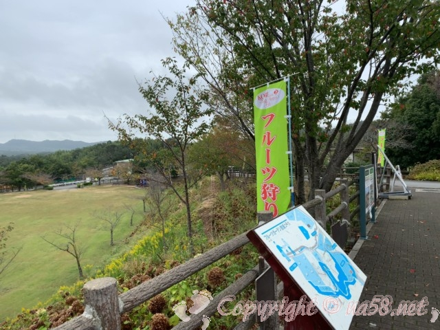 神戸フルーツフラワーパーク大沢(神戸市)、フルーツ狩り