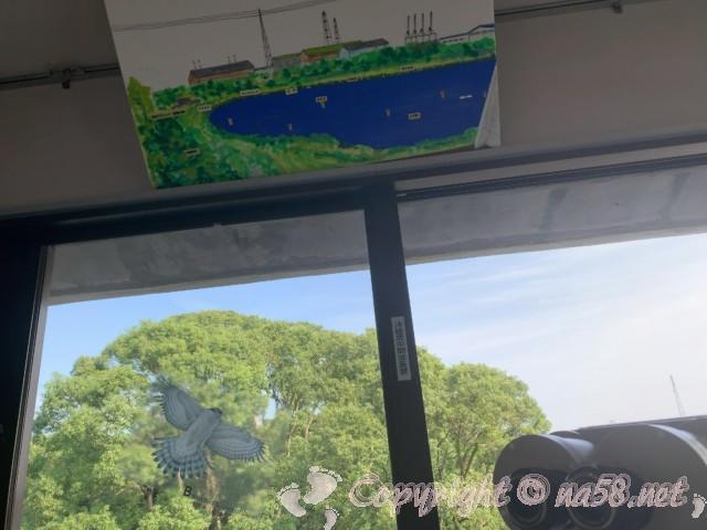 弥富野鳥園(愛知県弥富市)の3階、池のどこにどんな鳥がいるか解説