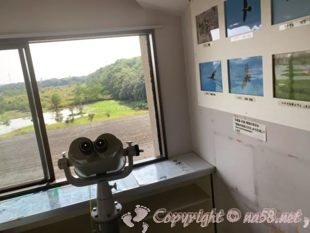 弥富野鳥園(愛知県弥富市)の3階で大型双眼鏡と観察できる鳥の説明