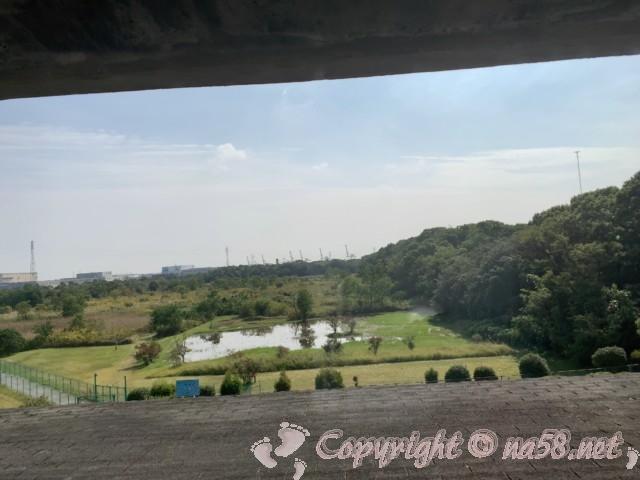 弥富野鳥園(愛知県弥富市)の3階から沼を見たところ