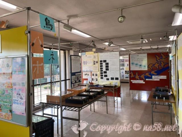 弥富野鳥園(愛知県弥富市)の2階、パネル展示