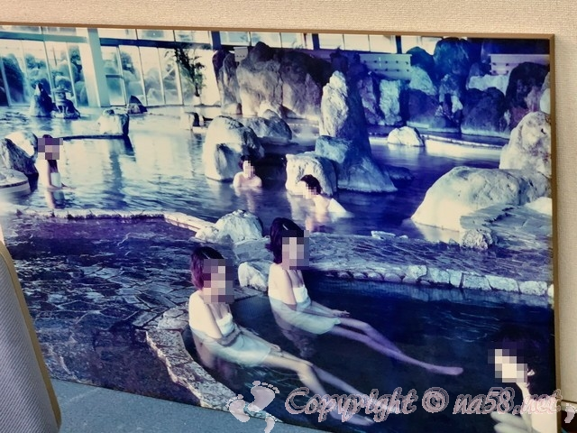 尾張温泉東海センター(愛知県蟹江市)の庭園大浴場