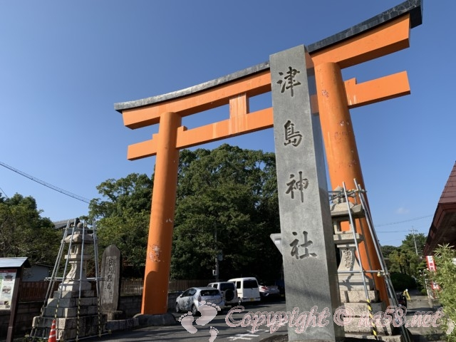 津島神社(愛知県津島市)南門の大鳥居