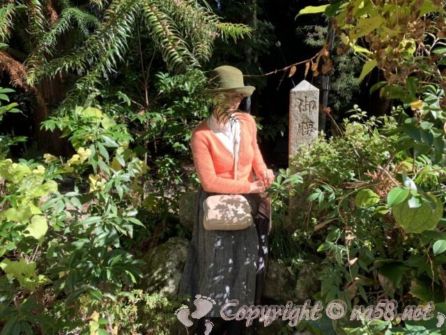 小原四季桜まつり(愛知県豊田市)家康の腰かけ石に座ってみる