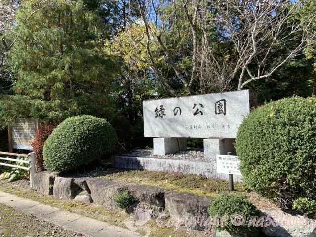 小原四季桜まつり(愛知県豊田市)四季の回廊ウォーキング、緑の公園