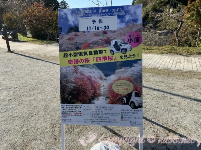 「小原の四季桜」愛知県豊田市、小原四季桜まつりに運行される「超小型電気自動車」