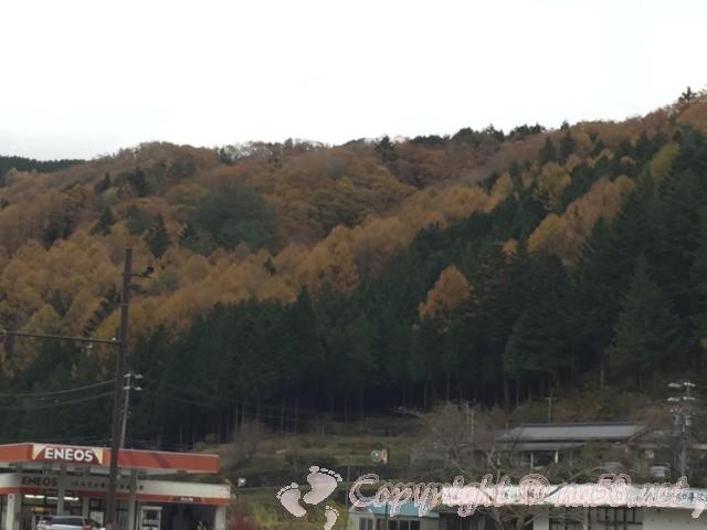 道の駅信州平谷(長野県平谷村)の道路の向こう側にあるJAとガソリンスタンド