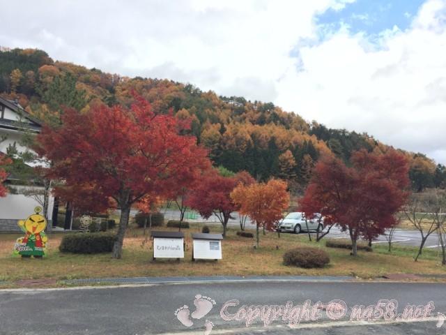 道の駅信州平谷(長野県平谷村)宿泊施設よりにある「ひまわりの森」と周囲の山と紅葉