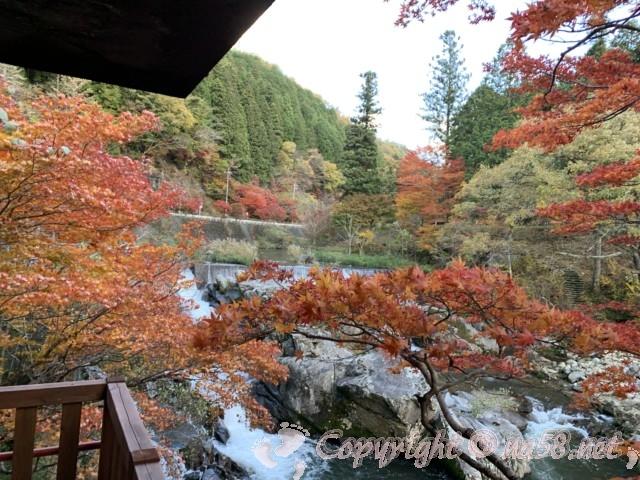 大井平公園(豊田市稲武町)の見晴らし台からの見事な紅葉