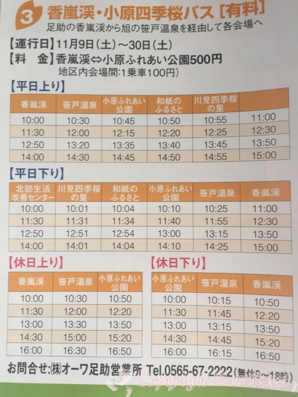 「小原の四季桜」愛知県豊田市、香嵐渓・小原四季桜バス(有料)