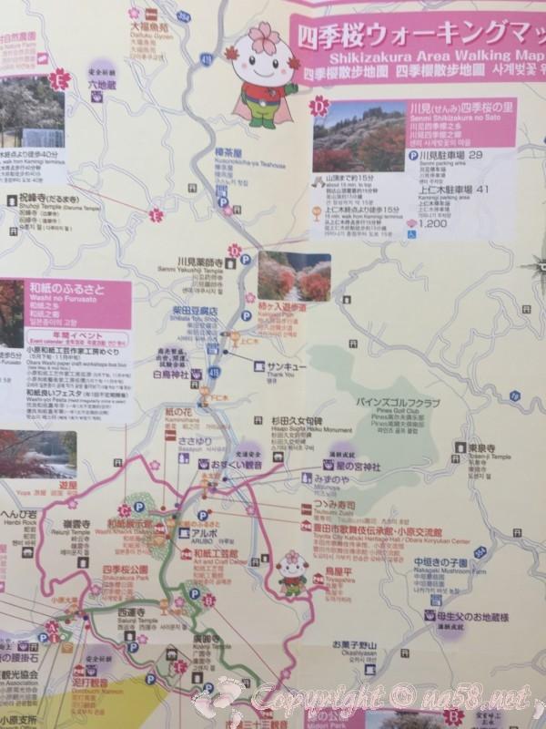 小原四季桜まつり(愛知県豊田市)「四季桜ウォーキングマップ」