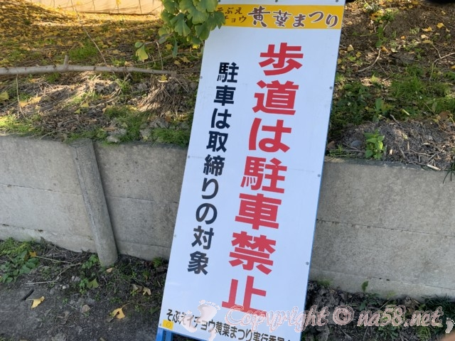 そぶえイチョウ黄葉まつり、歩道は駐車禁止の看板
