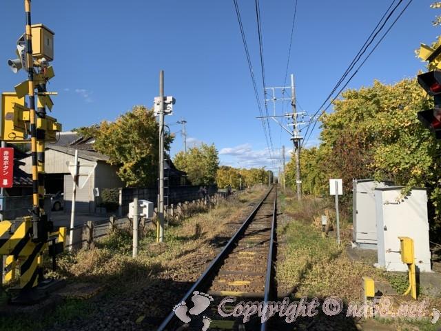 そぶえイチョウ黄葉まつり、山崎駅付近のイチョウ、踏切から