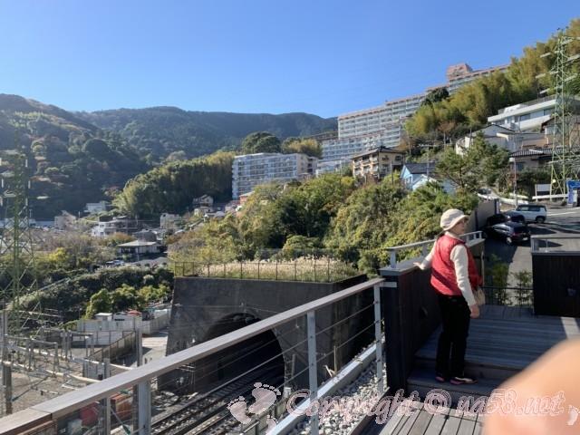 熱海来宮神社、「梅園の結び葉・展望デッキ」(静岡県熱海市)から熱海梅園方向の山の風景