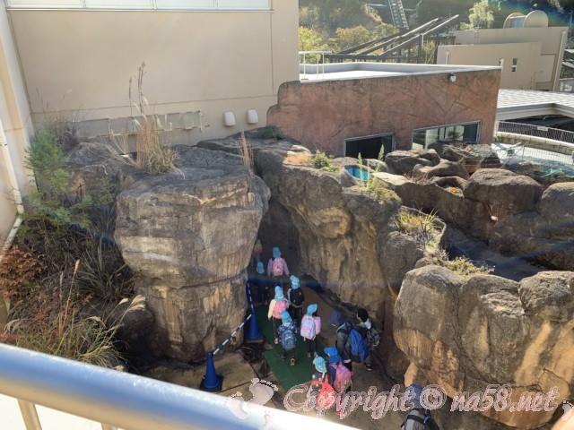 静岡市立日本平動物園(静岡県静岡市)動物たちの館はこんな風に立体的