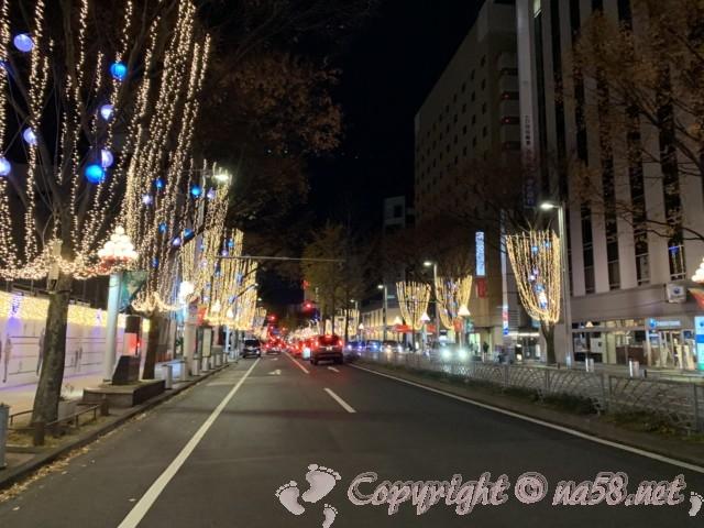 広小路通り(名古屋市中区)のクリスマイルミネーション