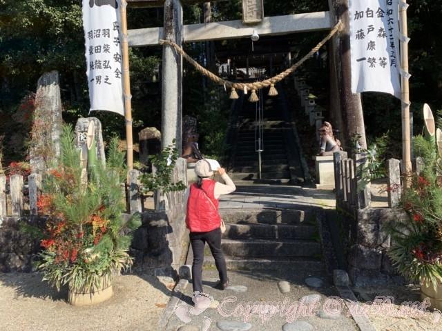 世界一(日本一)の狛犬(こまいぬ)(岐阜県瑞浪市)のある「八王子神社」の鳥居と門松