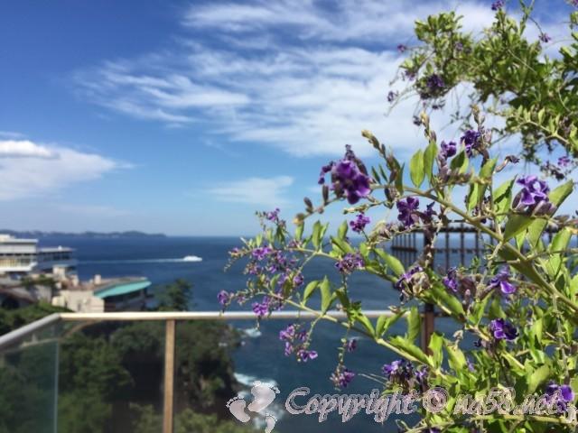 熱海の錦ヶ浦、伊豆の景勝地、初島への連絡船と初島