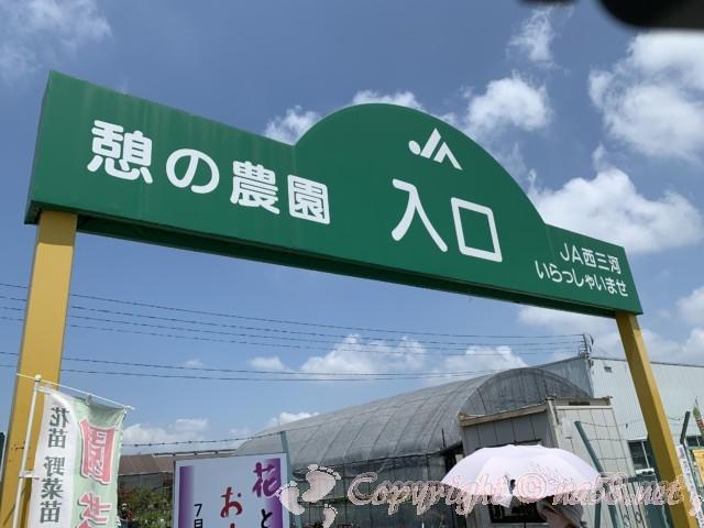 愛知県西尾市「憩いの農園・バラ園」入り口のゲート