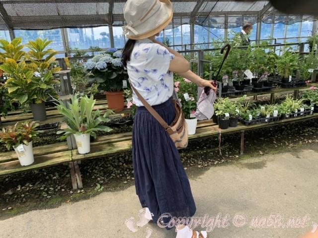 愛知県西尾市「憩いの農園・バラ園」、特設会場の中