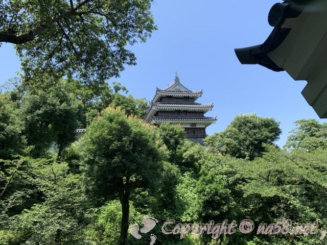 西尾市歴史公園(愛知県西尾市)西尾城の丑寅櫓、緑にはえるアングルで