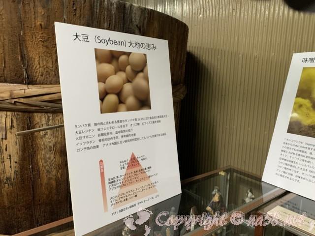 味噌蔵見学、はと屋みそパーク(愛知県西尾市)味噌蔵の中 大豆の説明